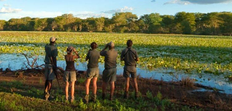 Safari Guide Course – 28 days